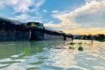Chao Phraya River SUP Adventure